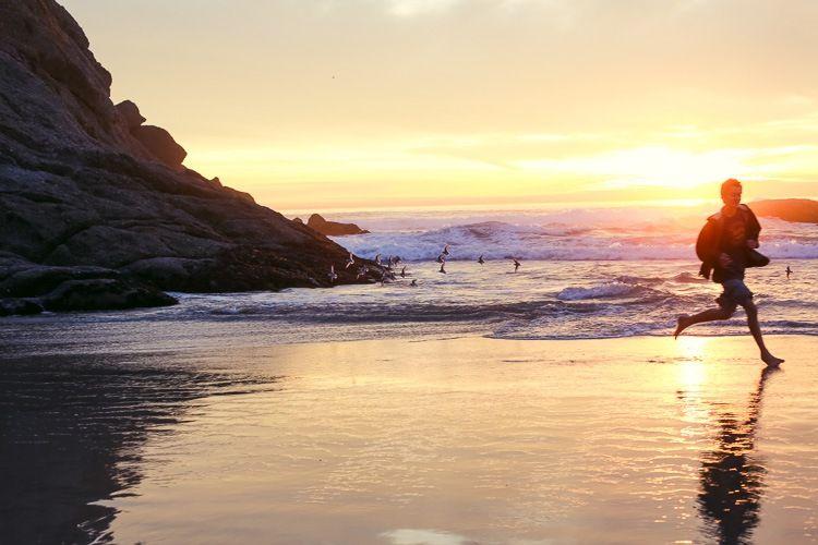 twilight life at the beach.  susan keller photography