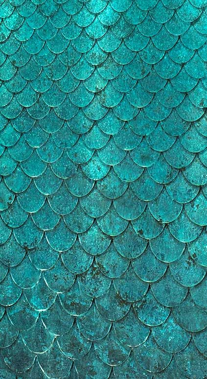 Detail Of A Bronze Petal Water Wall Candy