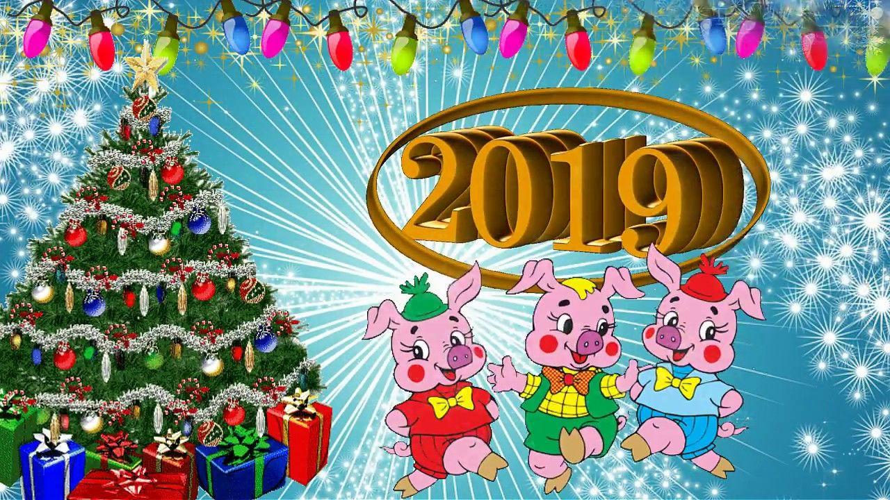 Поздравления видео открытки 2019, цветами