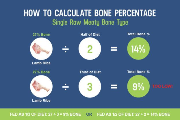 Updated how to balance the calcium and phosphorus in your dogs raw updated how to balance the calcium and phosphorus in your dogs raw diet dogs naturally magazine raw food recipesraw forumfinder Choice Image