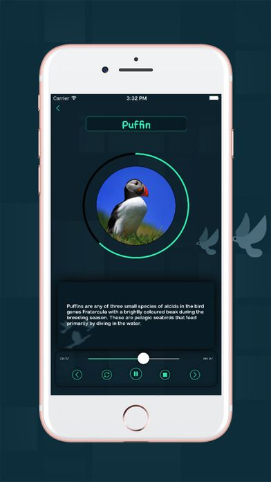 Pin by Multipz Services on Multipz Services App Birds