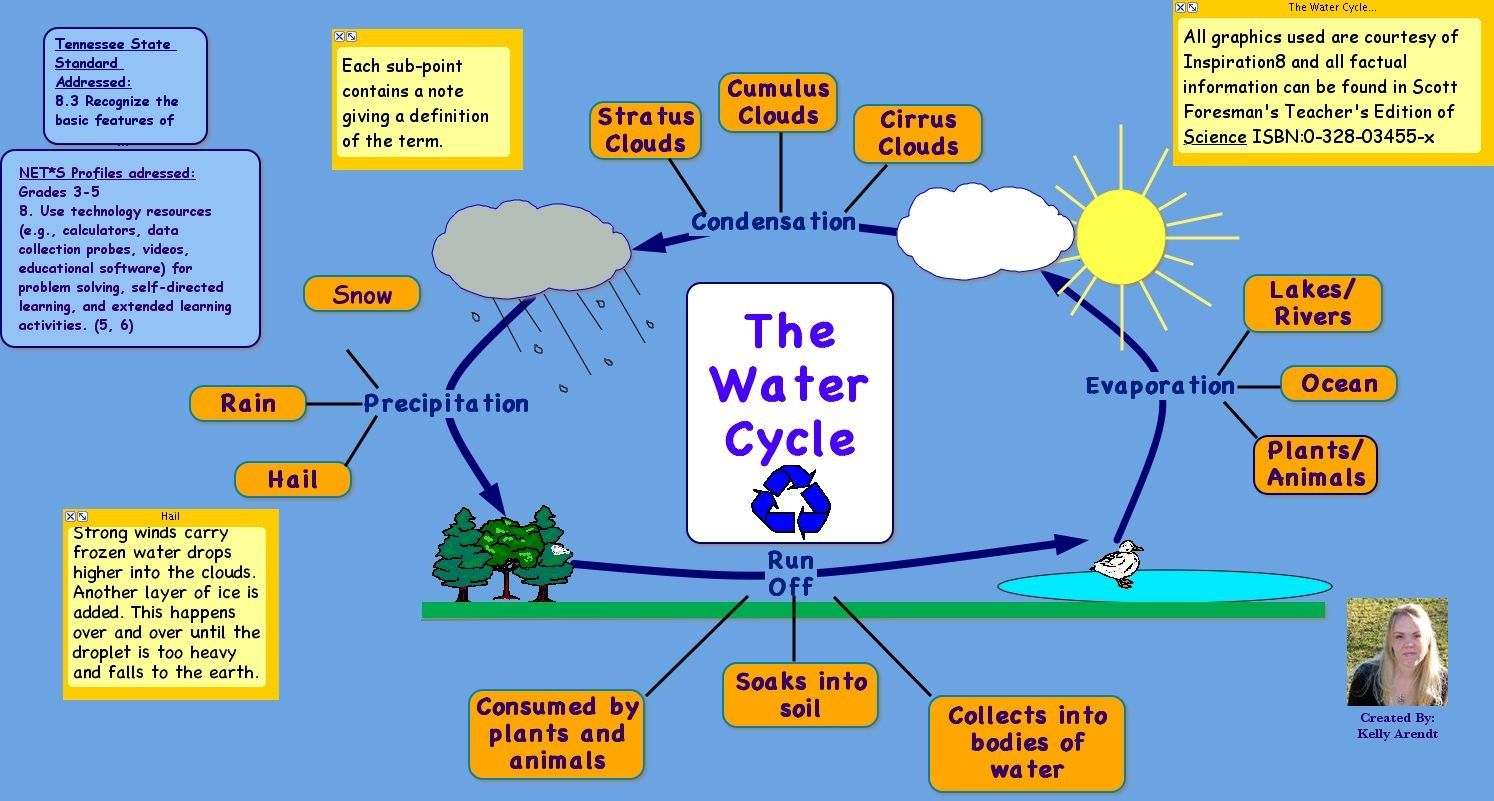 Phase diagram worksheet free printable math worksheets mibb diagram of water cycle diagram site 28 images diagrams of the water cycle 2017 diagram site the water cycle diagrams diagram site the water cycle thecheapjerseys Images