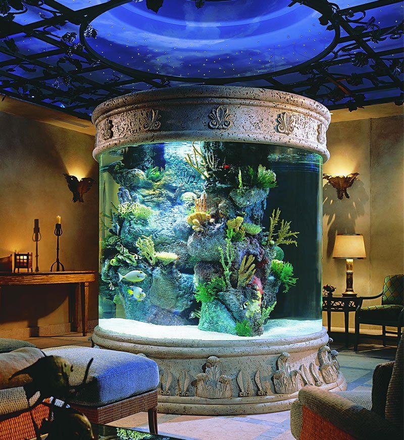 Large Column Aquarium