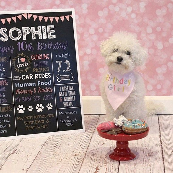 Photo of Dog Birthday Chalkboard Sign-Puppy Dog- Dog Bones- Printable Birthday Chalkboard Poster- Birthday Board- Personalized Custom Sign