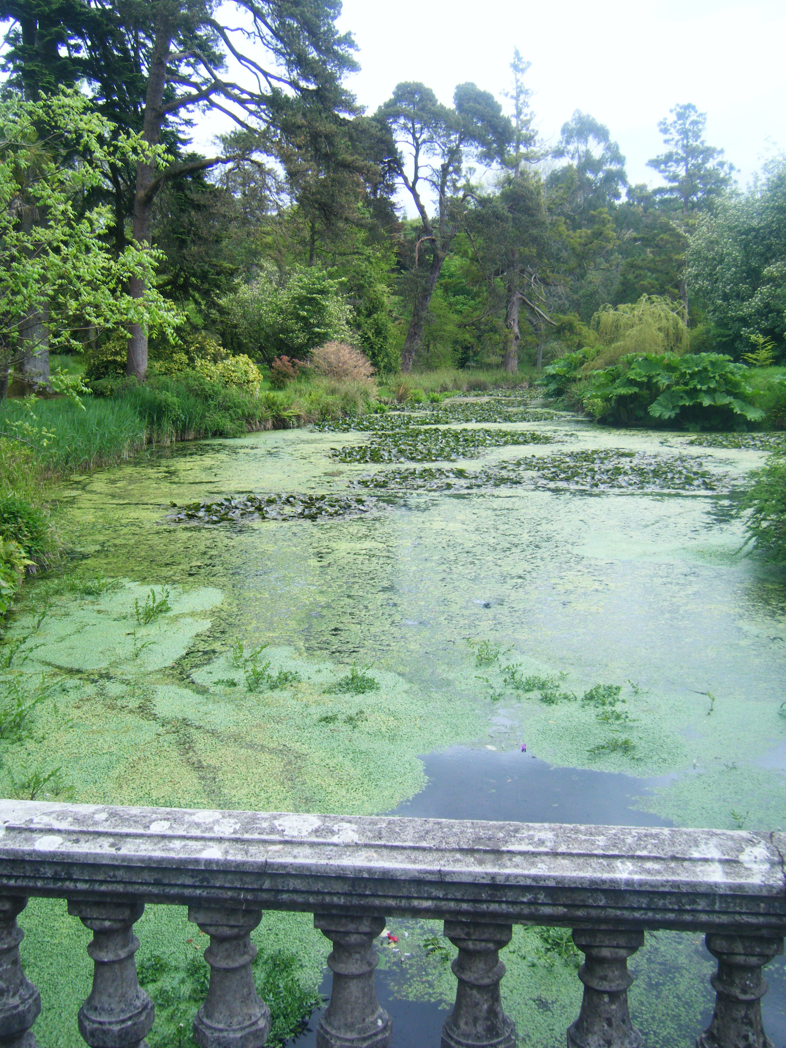The Lake Fota Gardens Fota Island Cork Ireland