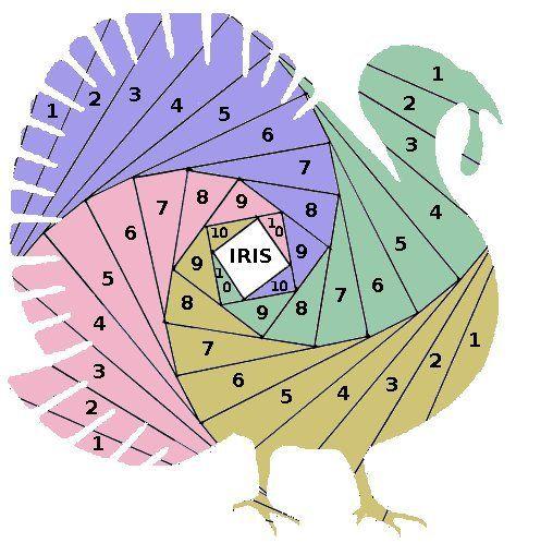 turkey iris folding template  u2026