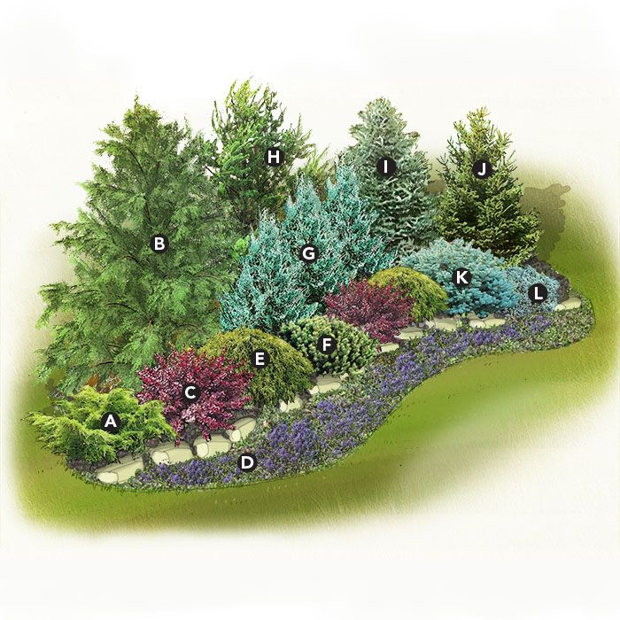 Small version for west corner of yard | Privacy ...