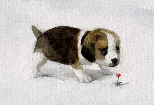 Animalarium: Sunday Safari - Good Little Dogs
