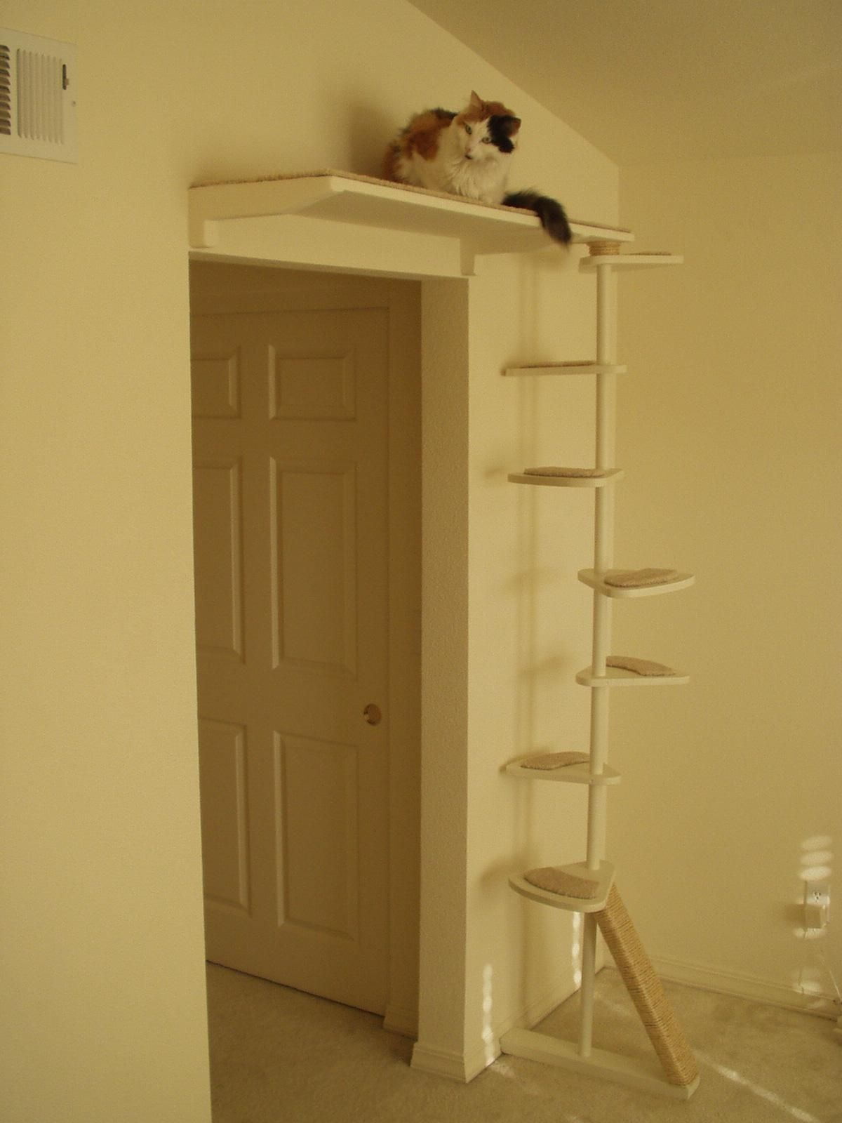 To Buy Or Not To Buy A Cat Tree Cool Cat Trees Cat Furniture Diy Cat Room