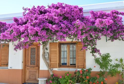 Pretty house in Lefkes, Paros