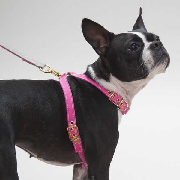 Canvas Harness Pink/Grey