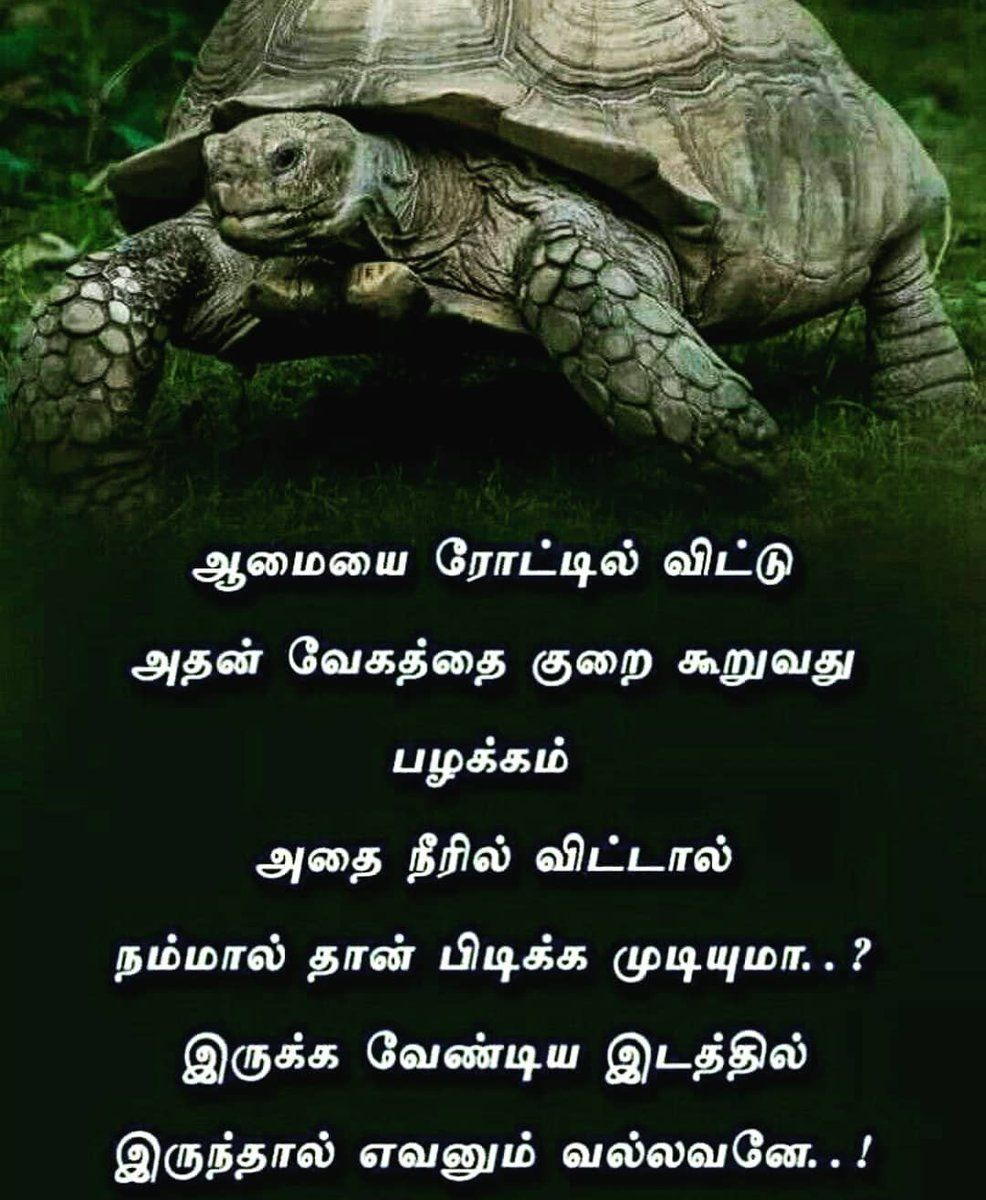 10++ Inspirational Quotes On Life Tamil Richi Quote in