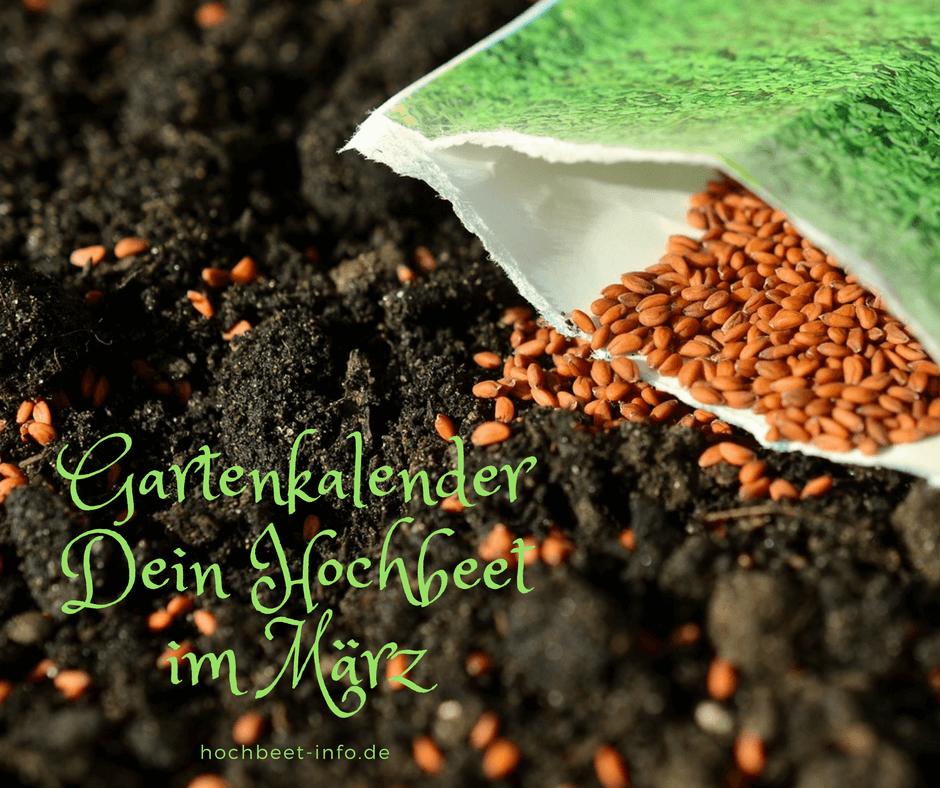 Gartenkalender Dein Hochbeet Im Marz In 2020 Hochbeet Gartenkalender Salat Pflanzen