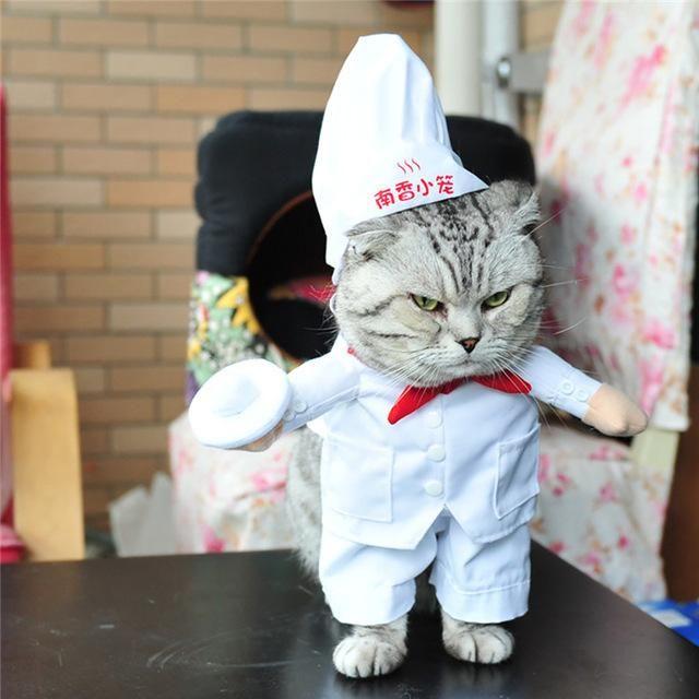 Funny Cat Costume Nurse Policeman Pirate Cowboy Suit Dog Cat