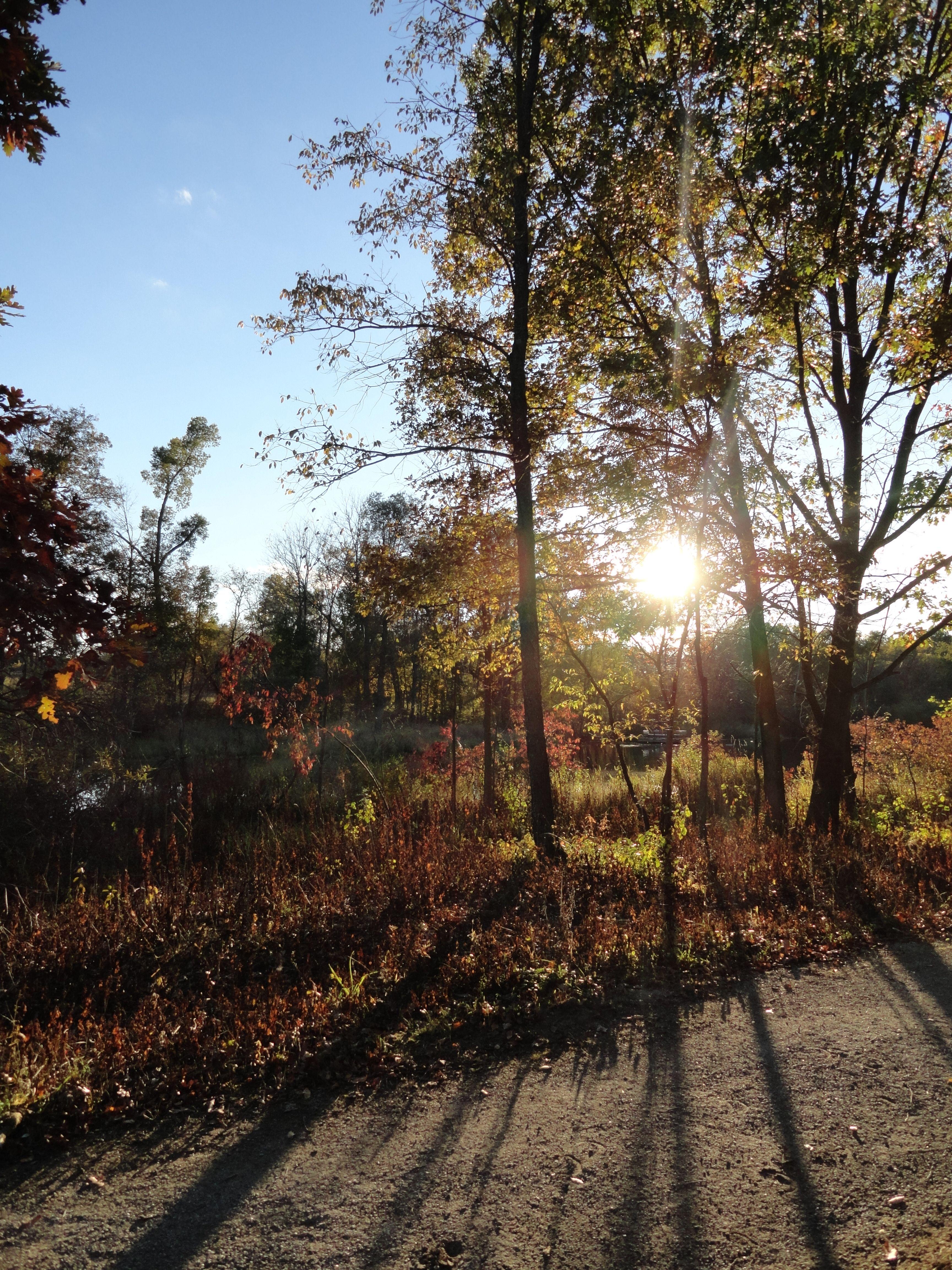 Bear creek park oakland township michigan country