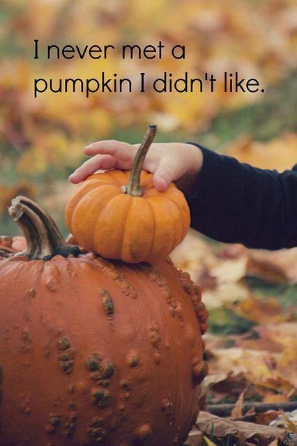 Calabaza Pumpkin Fall Thanksgiving Fall Pumpkins