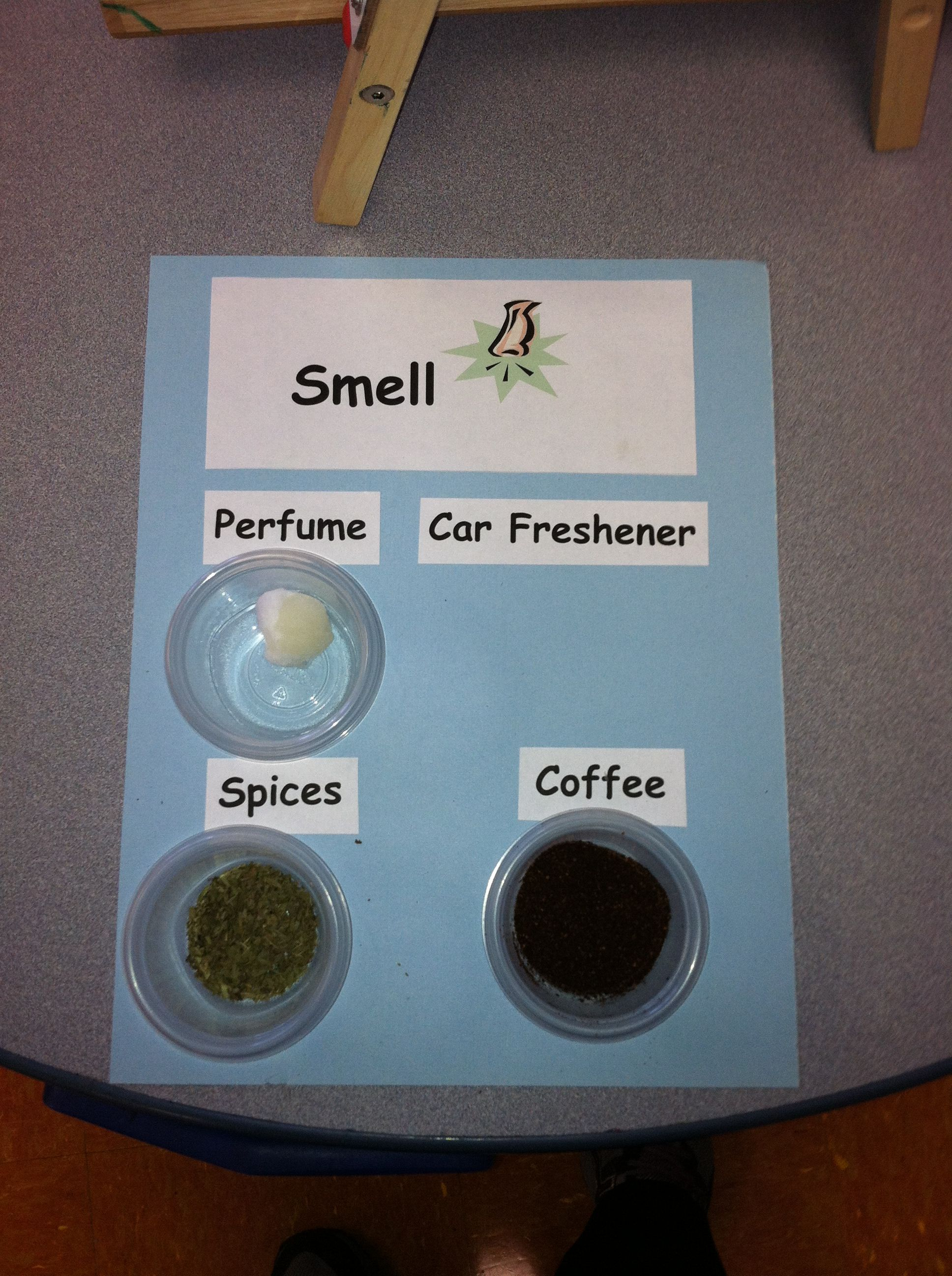 My 5 Senses Smell Activity Board