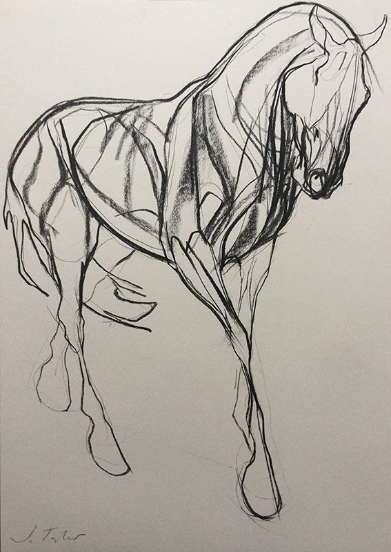 The Proposition Study | animals | Pinterest | Horse, Drawings and ...