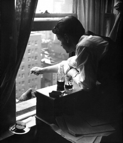 A young man feeding two pigeons at his window. Photograph by Nina Leen. New York City, 1949.
