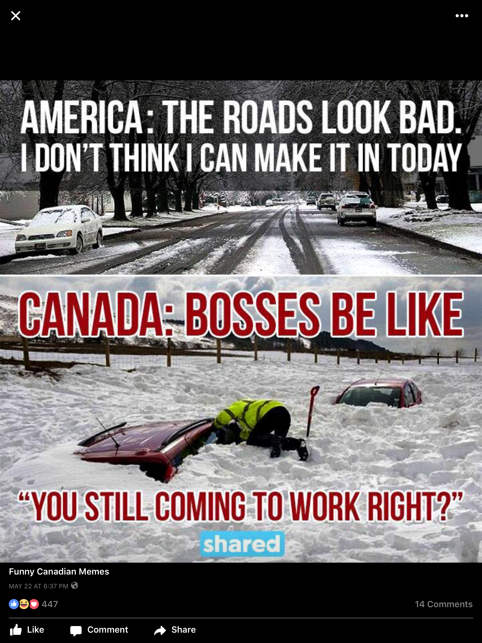 Pin by Pauline Lindley on Canadiana Meanwhile in canada