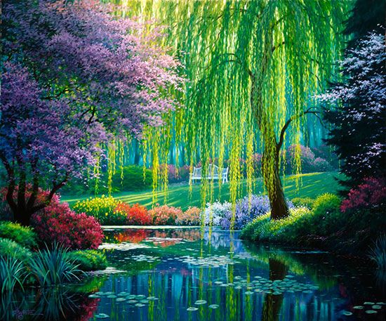 Water Wall Mural Water Nature Art Drawing Painting Wall Illustration Pond Koi Mural Monet Garden Giverny Beautiful Landscapes Beautiful Nature