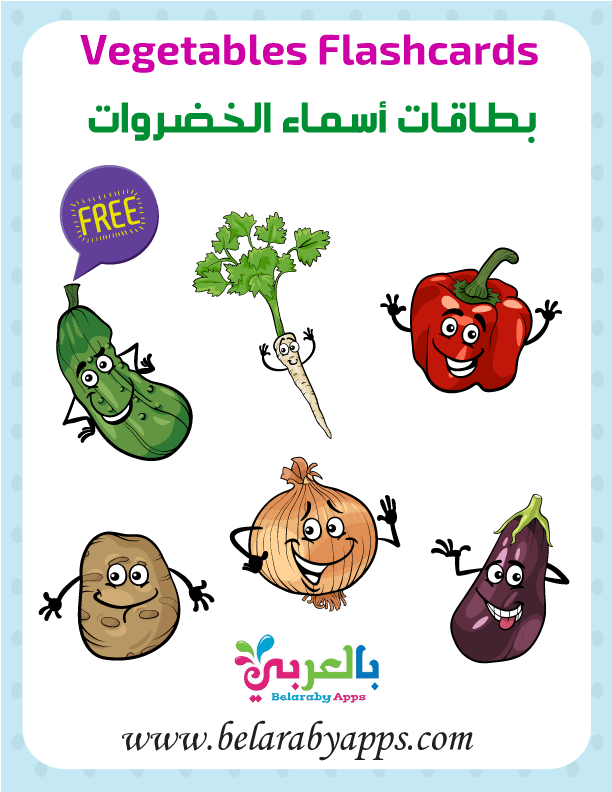 اسماء الخضروات بالانجليزي والعربي بالصور فلاش كارد الخضروات بالعربي نتعلم Flashcards Vegetables Free