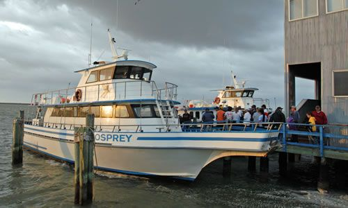 Deep sea fishing with the osprey fishing boat south for Deep sea fishing south padre island