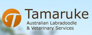 Http Australialabradoodles Com Veterinary Services Therapy