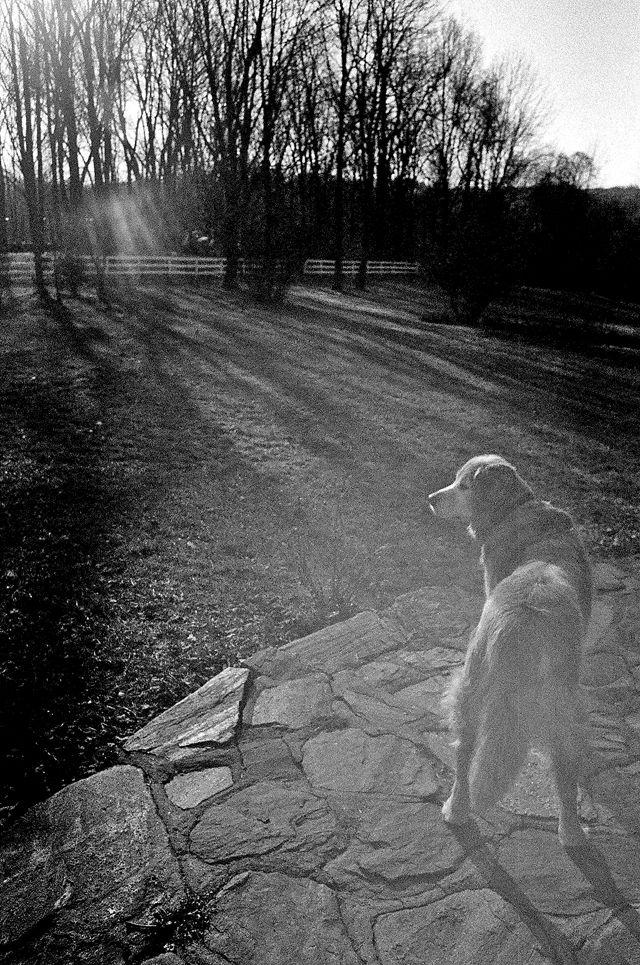 kate uhry photography: Nikon FG-20
