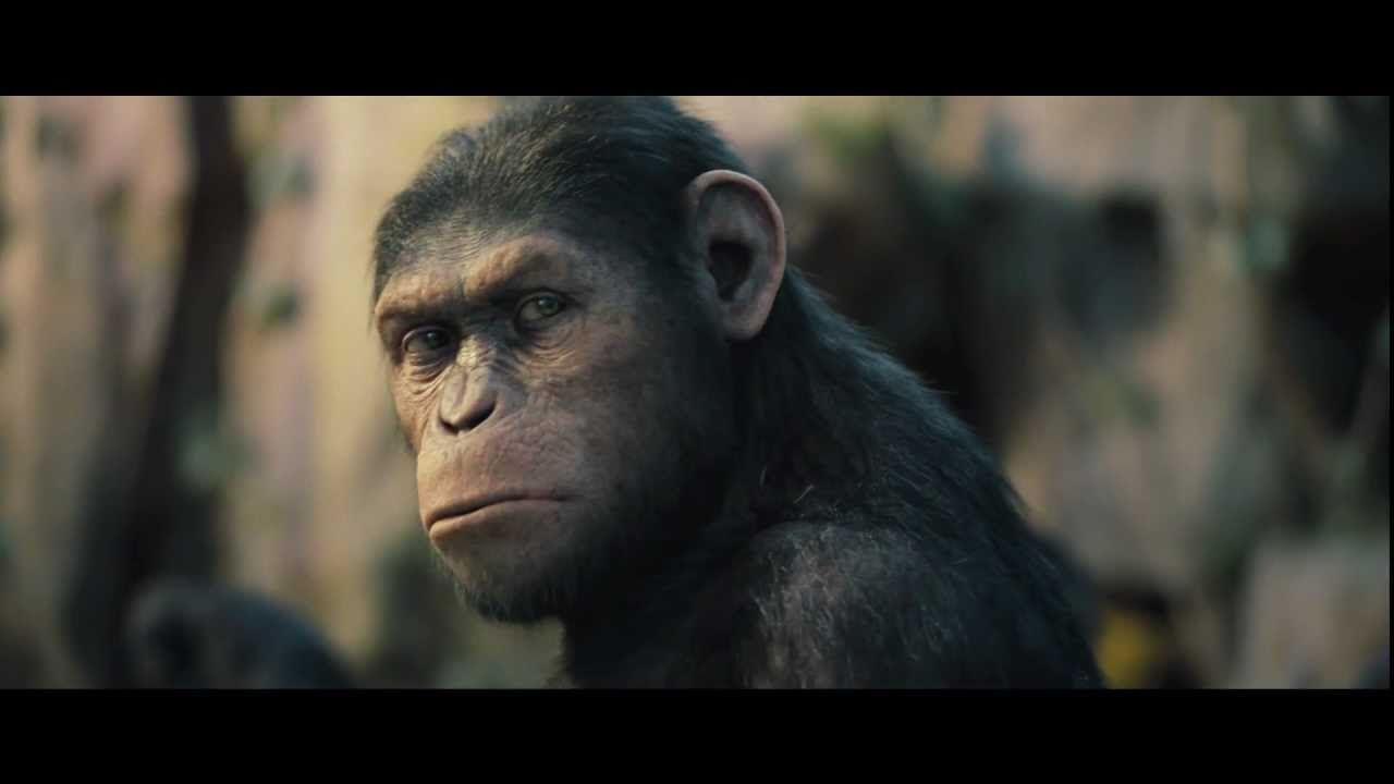 Planet Der Affen Prevolution Ganzer Film