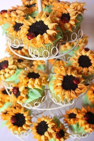 SUNFLOWERS AND LADYBUGS #sunflowercupcakes Sunflower Cupcakes :) #sunflowercupcakes SUNFLOWERS AND LADYBUGS #sunflowercupcakes Sunflower Cupcakes :) #sunflowercupcakes SUNFLOWERS AND LADYBUGS #sunflowercupcakes Sunflower Cupcakes :) #sunflowercupcakes SUNFLOWERS AND LADYBUGS #sunflowercupcakes Sunflower Cupcakes :) #sunflowercupcakes SUNFLOWERS AND LADYBUGS #sunflowercupcakes Sunflower Cupcakes :) #sunflowercupcakes SUNFLOWERS AND LADYBUGS #sunflowercupcakes Sunflower Cupcakes :) #sunflowercupca #sunflowercupcakes