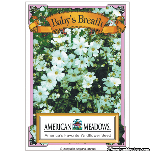 Baby S Breath Seed Packet Flower Seeds Packets Babys Breath Garden Baby Shower Theme