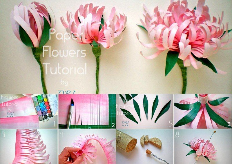 Beautiful paper flower