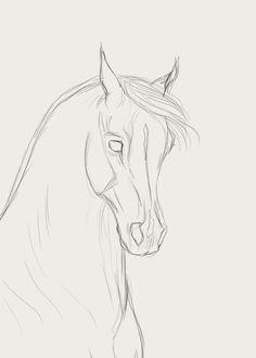 How To Draw Horse Faces Desenhos De Animais A Lápis