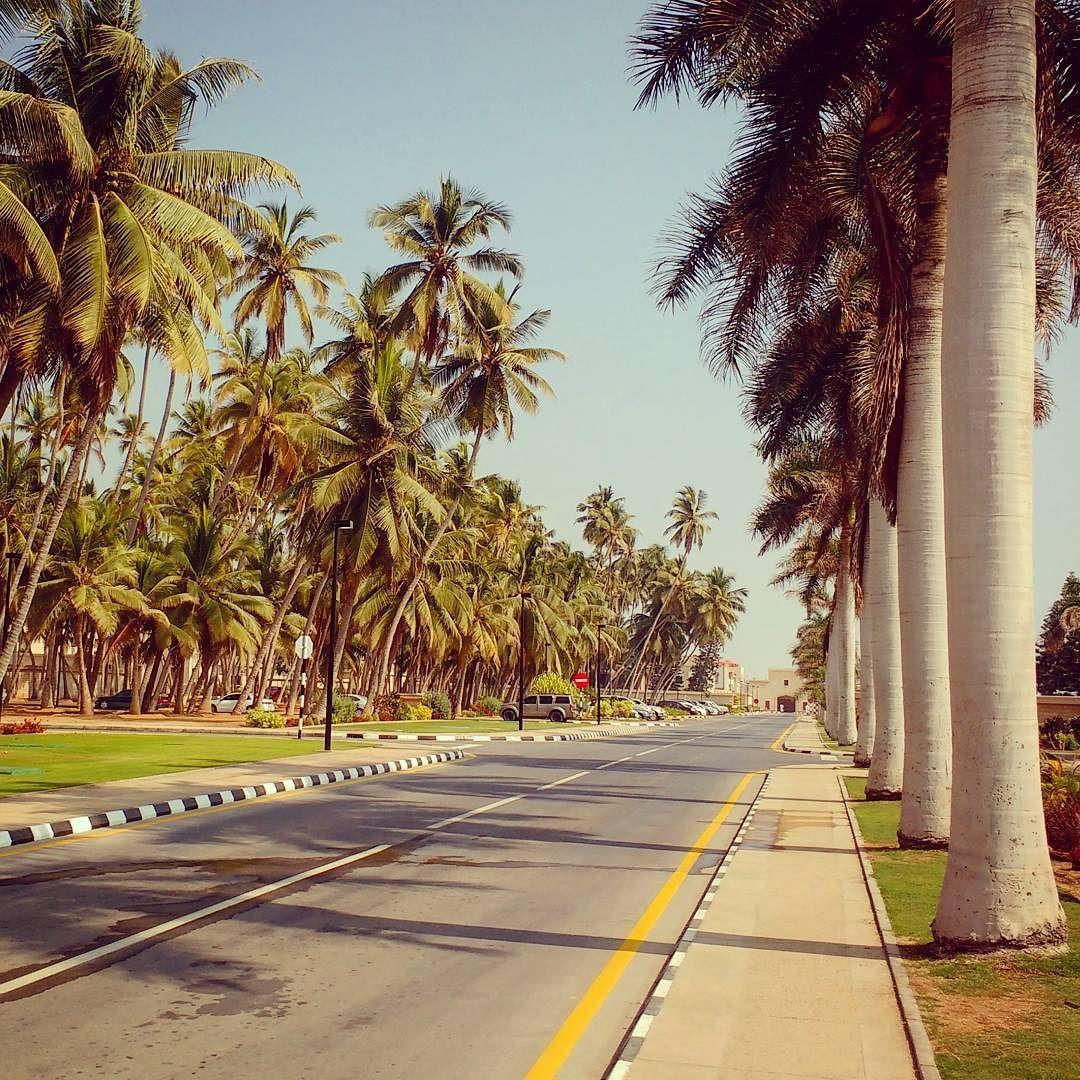 Close to the palace. #asia #oman #salalah #palace #palmtrees #palms ...