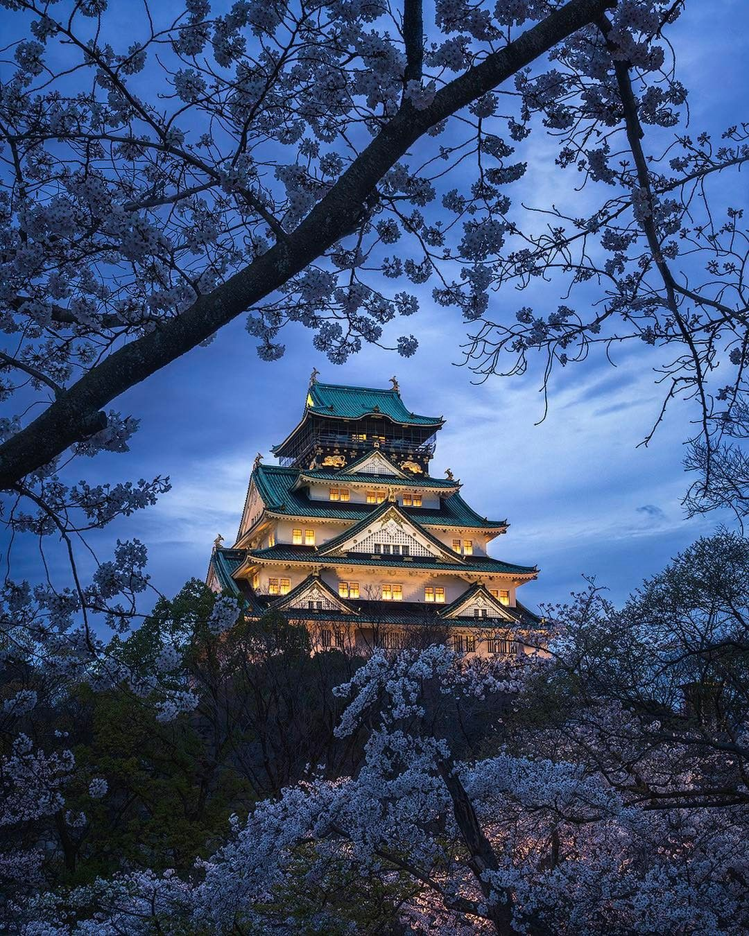 Osaka Castle, Osaka, Japan, 大阪城, 大阪, 日本, #sakura #cherryblossom 桜  www.travel4life.club