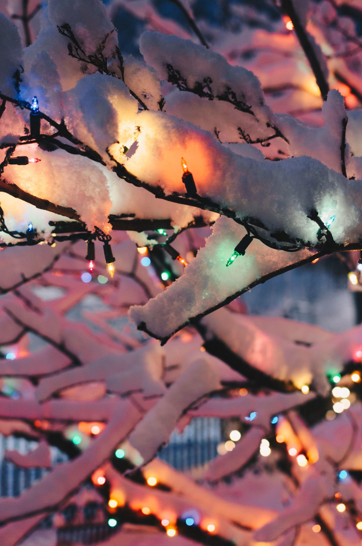 Photo of Weihnachten im Freien ☆ Draußen dekorieren