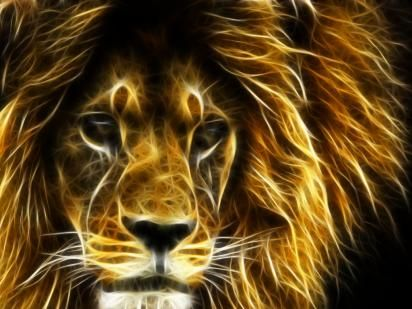 Lion 3d Hd Wallpapers Lion Hd Wallpapers Download Lion Hd Wallpaper Animal Wallpaper Animal Totems