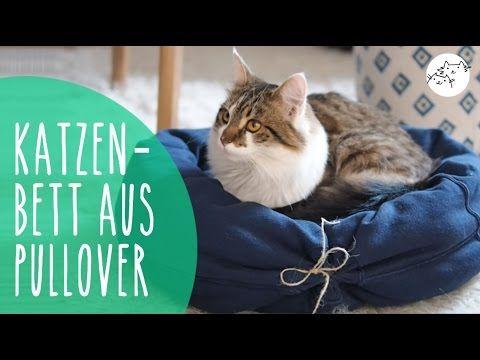 Katzenbett Aus Pullover Selber Machen Diy Upcycling Katzenkissen Katzen Bett Katzenbett Katzen