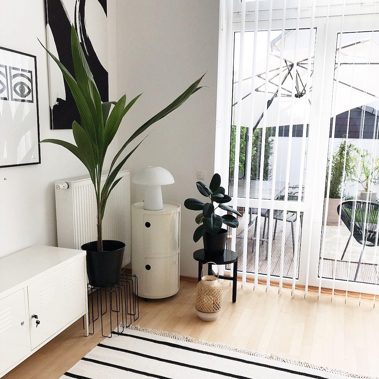 Wohnen mit Pflanzen  Wohnen, Wohnzimmer pflanzen, Wohnzimmer