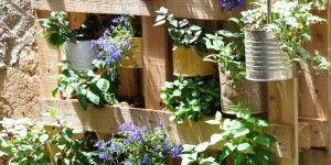 Wandgarten Selber Machen haengeder garten zum selber machen diy wandgarten diy