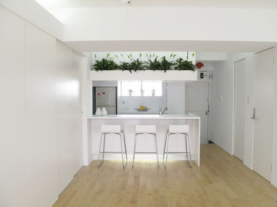 Plants For Kitchen To Decorate It: Above Kitchen Cabinets, Decor, Decorating Tips