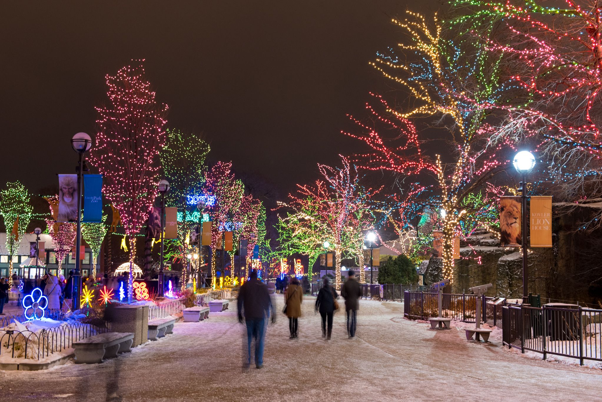 Twinkling Photos From Zoolights At Lincoln Park Zoo Chicago Christmas Zoo Lights Chicago Winter