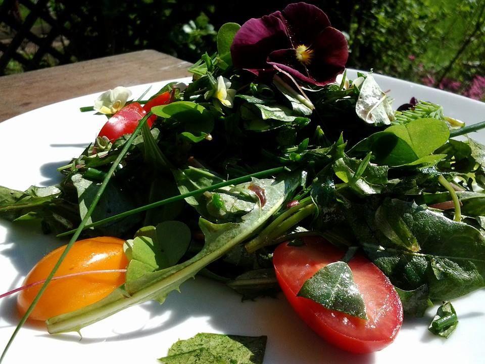 Koivunlehtiä, voikukkaa, ratamoa, käenkaalia, pelto-orvokkia, ruohosipulia, kuusenkerkkää, muutama tomaatti ja villiorvokki. Mausteeksi suolaheinää.