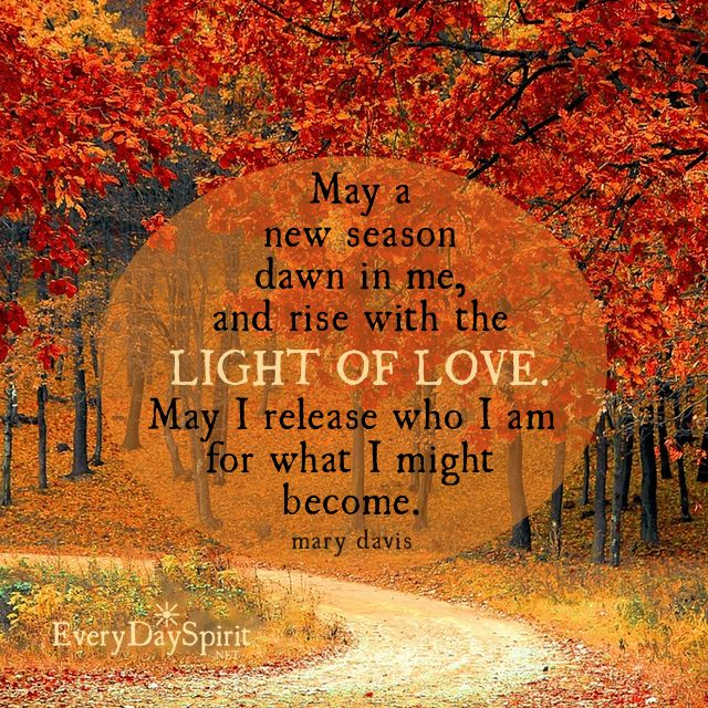 Image result for autumn majesty quotes