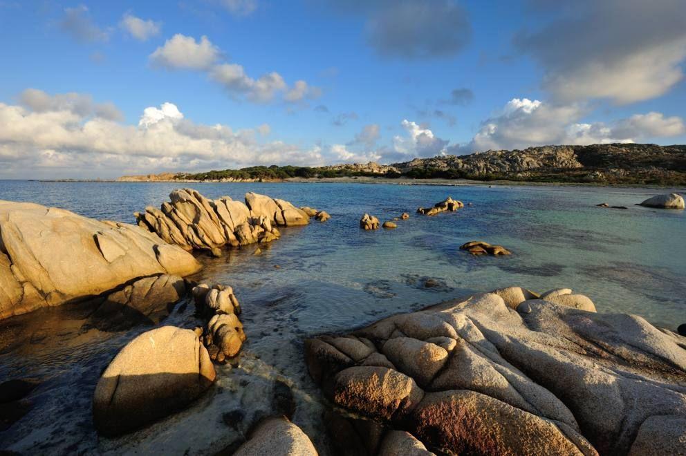 Cosa fare ad Asinara? A parte pesca, equitazione, giri in barca e bird watching l'isola non offre molto altro. Niente giri in auto: si possono fare dei tour organizzati in 4x4, ma altrimenti nell'isola sono ammesse solo le biciclette