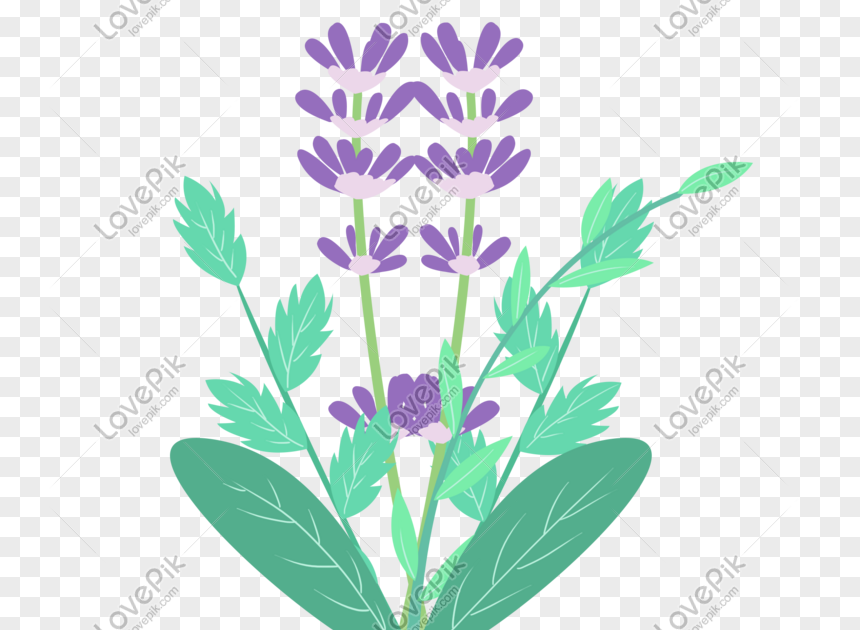 28 Gambar Animasi Bunga Kartun Download 5500 Gambar Animasi Bunga Lavender Hd Gratid Download Lukisan Bunga Kartun Cikimm Com Downlo Di 2020 Bunga Gambar Kartun