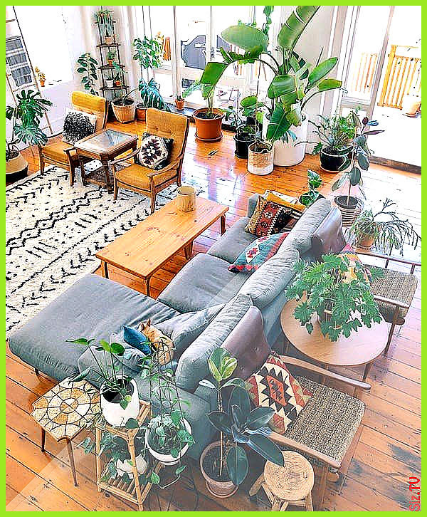 This New Zealand Home in a 1920s Converted Factory Is a Plant Lover s Dream 19 T…