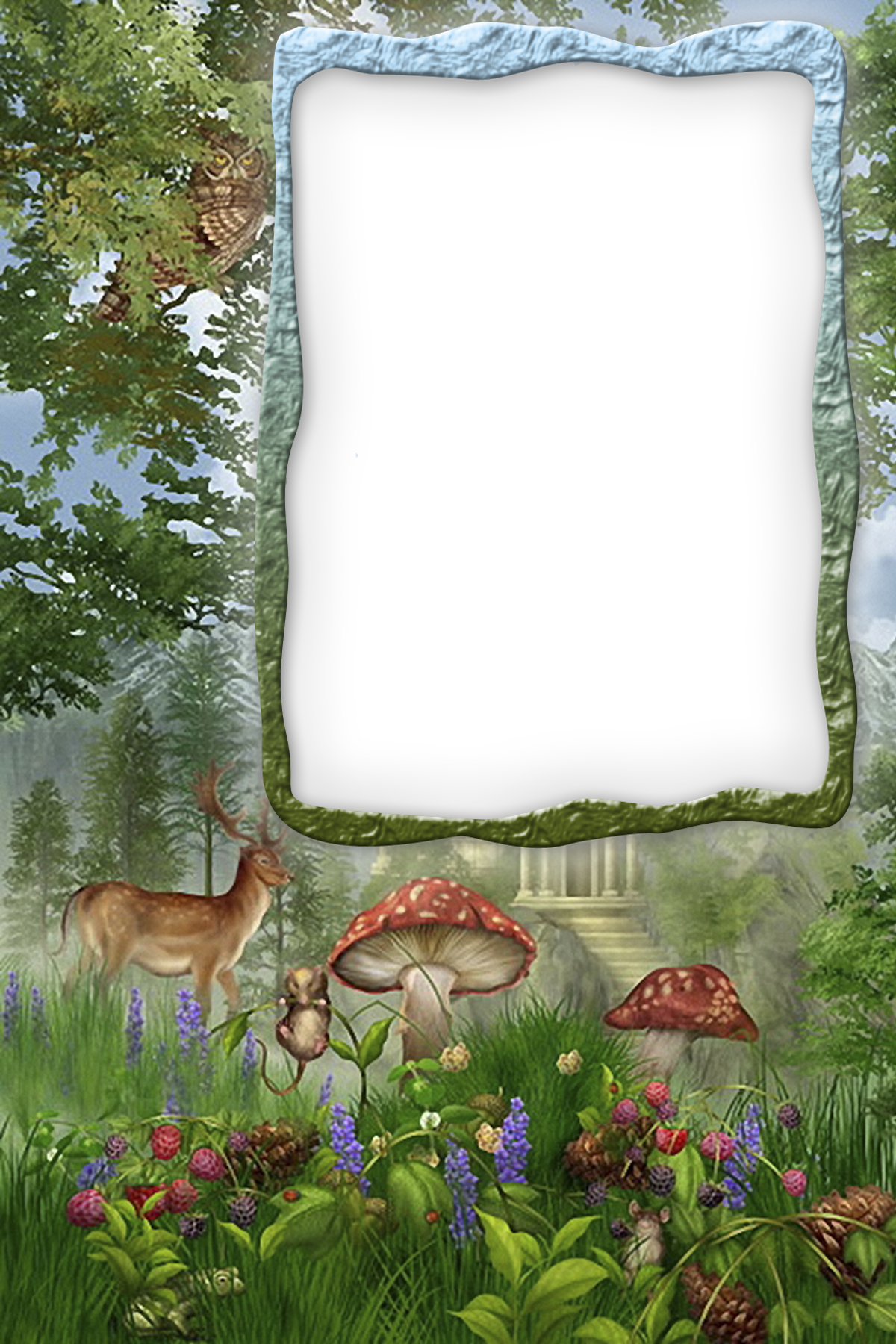 Transparent Forest Frame Clip Art Borders Flower Frame Sheet Music Art
