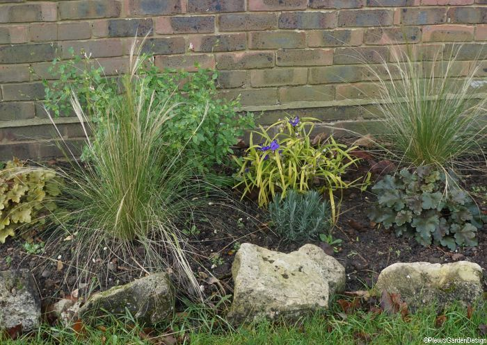 small border planting scheme for a front garden